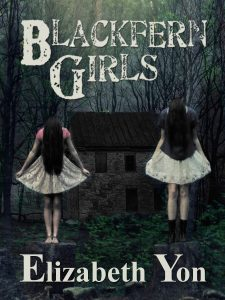Book Cover: Blackfern Girls