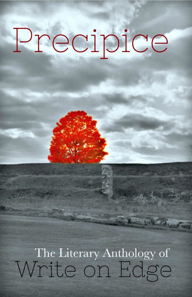 Book Cover: Precipice: Volume One